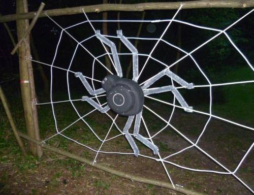 Bogenziel Spinne im Netz