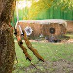 Bögen am Baum - Material zum Bogenschießen