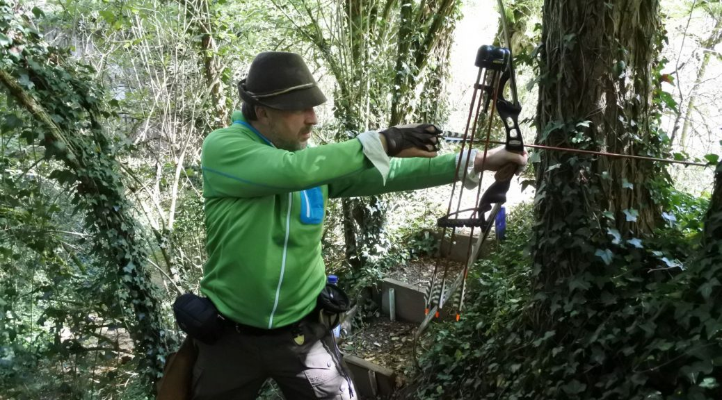 Jagd im Wald