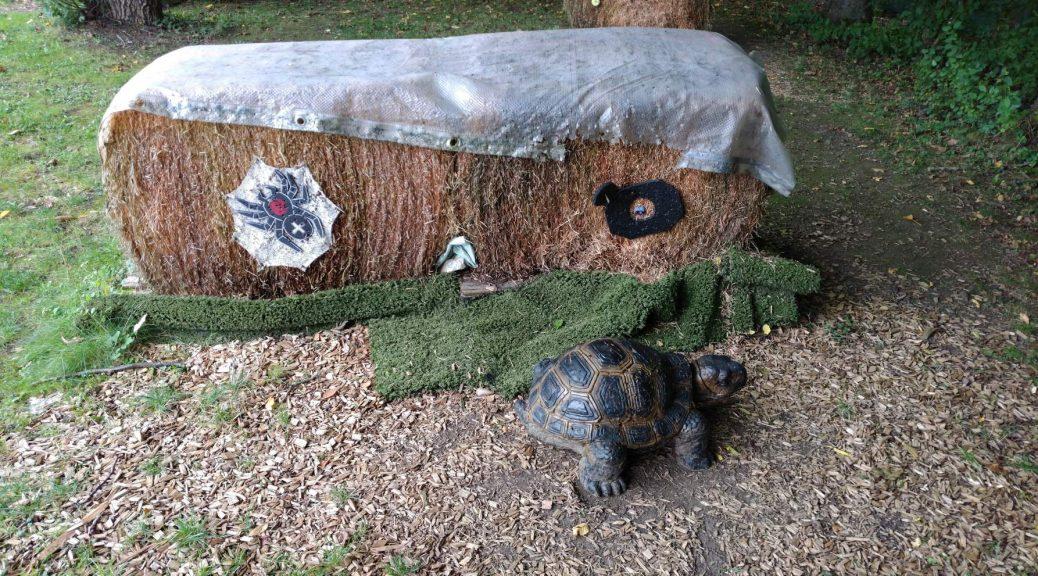 Schildkröte und Spinne als Bogenschießziel