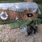 Schildkröte und Spinne -Bogenschießen auf Kleinziele