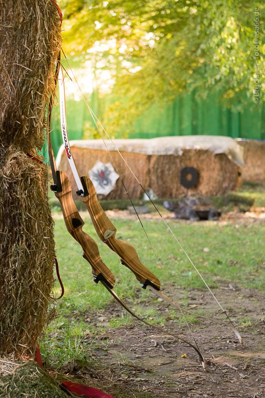 Bögen am Baum